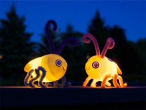 svítící světlušky